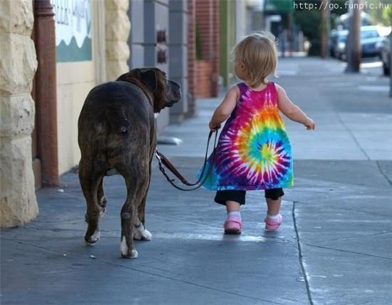 Vas promener le chien.